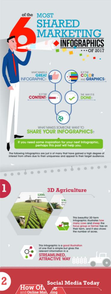 Portfolio - Infographic Design